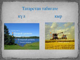 күл Татарстан табигате кыр