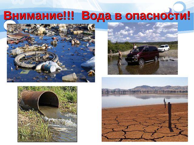 Внимание!!! Вода в опасности!