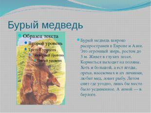 Бурый медведь Бурый медведь широко распространен в Европе и Азии. Это огромны