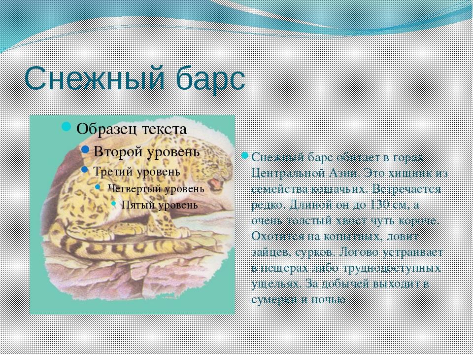 Снежный барс Снежный барс обитает в горах Центральной Азии. Это хищник из сем...