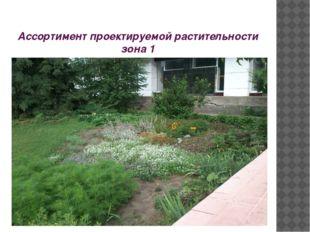 Ассортимент проектируемой растительности зона 1