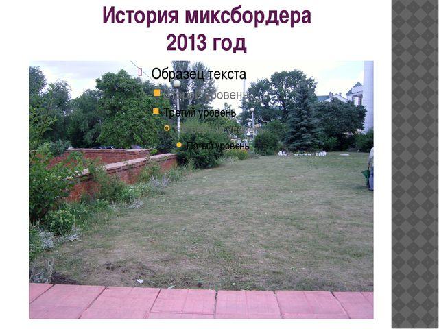 История миксбордера 2013 год