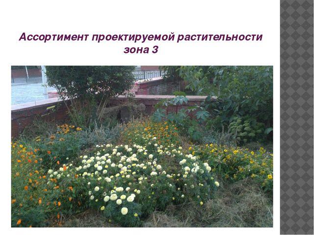 Ассортимент проектируемой растительности зона 3