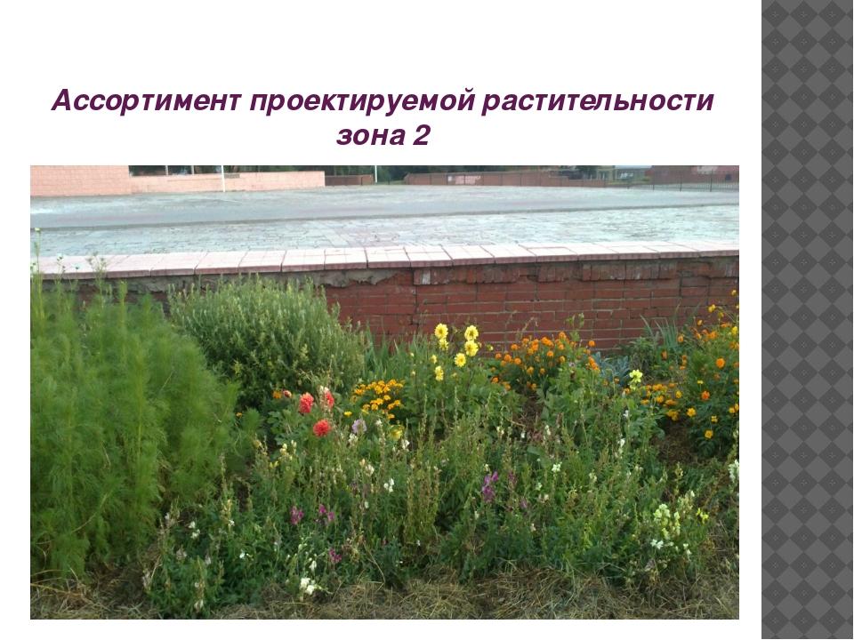 Ассортимент проектируемой растительности зона 2