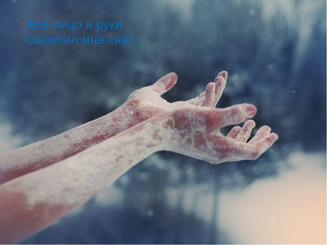 Всё лицо и руки Залепил мне снег...