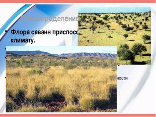 Самоопределение к деятельности Флора саванн приспособлена к сухому климату. Ф