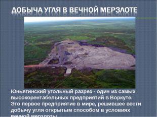 Юньягинский угольный разрез - один из самых высокорентабельных предприятий в