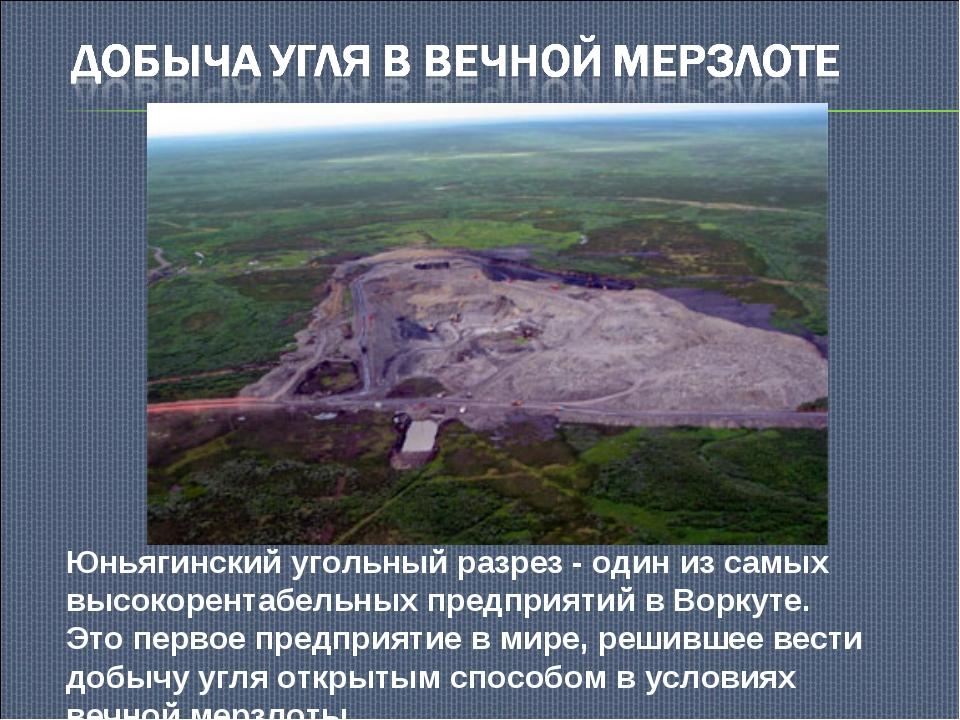 Юньягинский угольный разрез - один из самых высокорентабельных предприятий в...