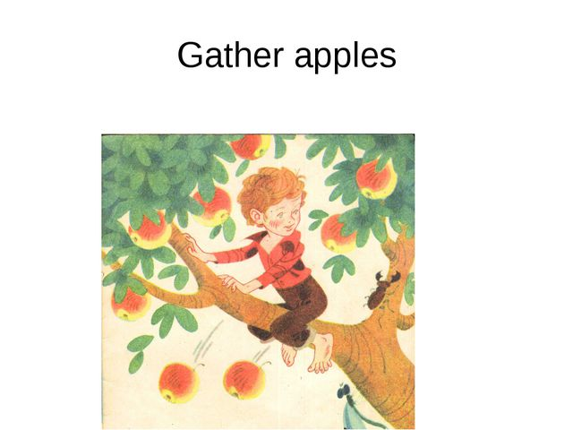Gather apples