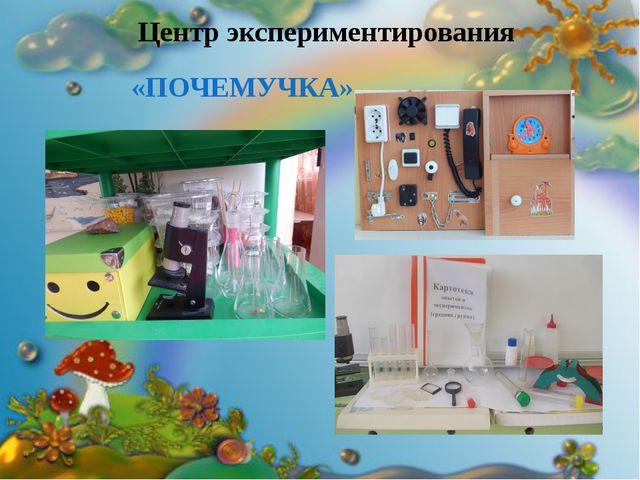 Центр экспериментирования «ПОЧЕМУЧКА» «ПОЧЕМУЧКА»