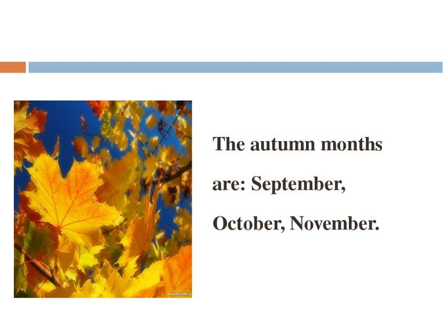 The autumn months are: September, October, November.