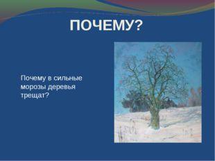ПОЧЕМУ? Почему в сильные морозы деревья трещат?