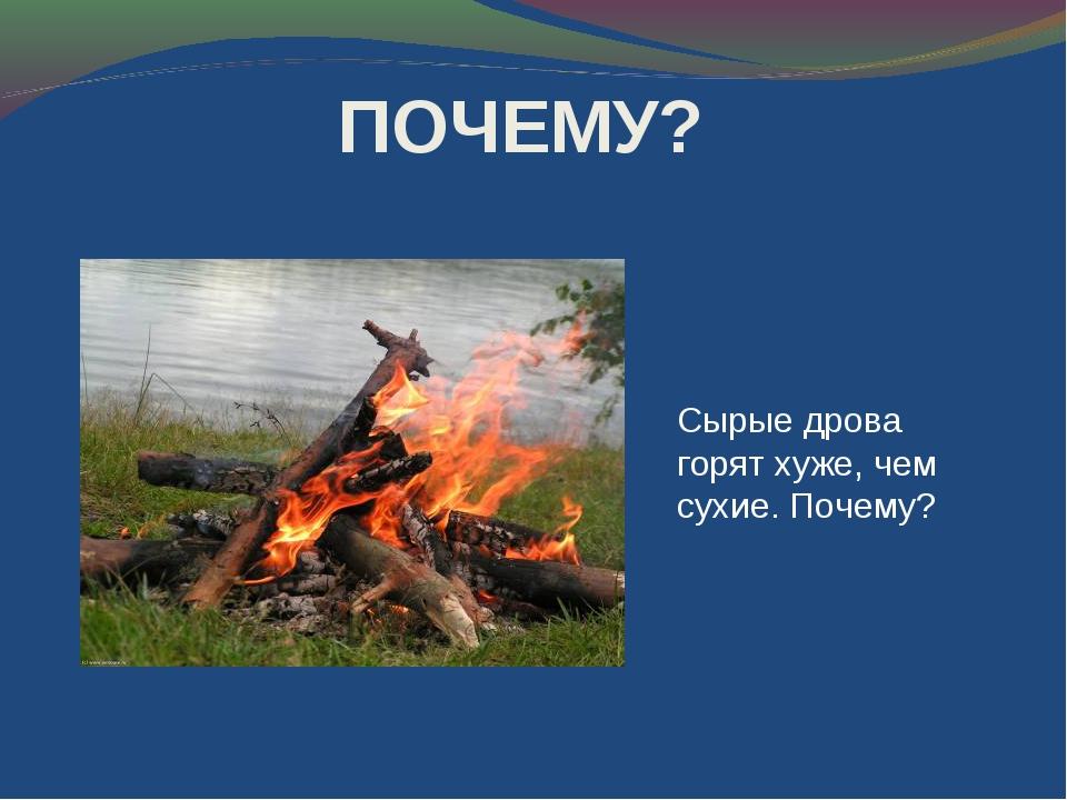 Сырые дрова горят хуже чем сухие. почему