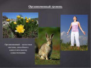 Организменный уровень Организменный – целостная система, способная к самостоя
