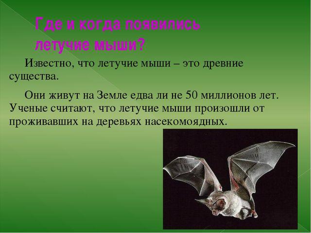 Где и когда появились летучие мыши? Известно, что летучие мыши – это древние...