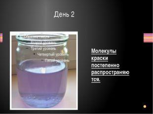 День 2 Молекулы краски постепенно распространяются.