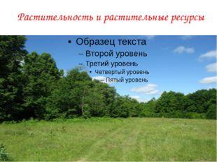 Растительность и растительные ресурсы