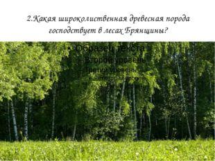 2.Какая широколиственная древесная порода господствует в лесах Брянщины?