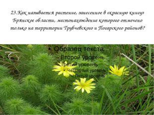 23.Как называется растение, занесенное в «красную книгу» Брянское области, ме
