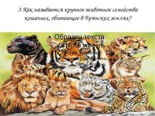 3.Как называется крупное животное семейства кошачьих, обитающее в Брянских зе