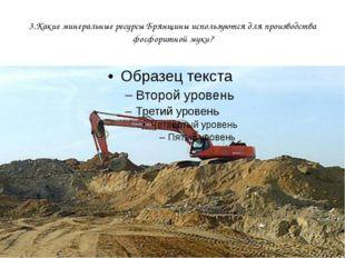 3.Какие минеральные ресурсы Брянщины используются для производства фосфоритно