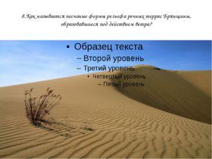 8.Как называется песчаные формы рельефа речных террас Брянщины, образовавшиес