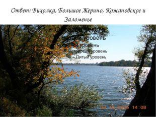 Ответ: Вихолка, Большое Жерино, Кожановское и Заломенье