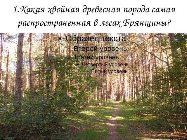 1.Какая хвойная древесная порода самая распространенная в лесах Брянщины?