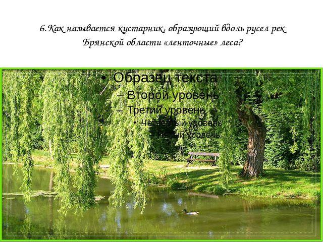 6.Как называется кустарник, образующий вдоль русел рек Брянской области «лент...