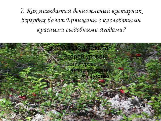 7. Как называется вечнозеленый кустарник верховых болот Брянщины с кисловатым...