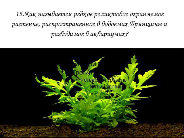 15.Как называется редкое реликтовое охраняемое растение, распространенное в в...