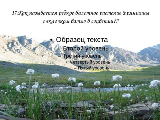 17.Как называется редкое болотное растение Брянщины с «клочком ваты» в соцвет...