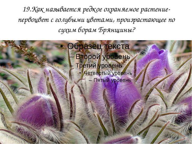19.Как называется редкое охраняемое растение-первоцвет с голубыми цветами, пр...