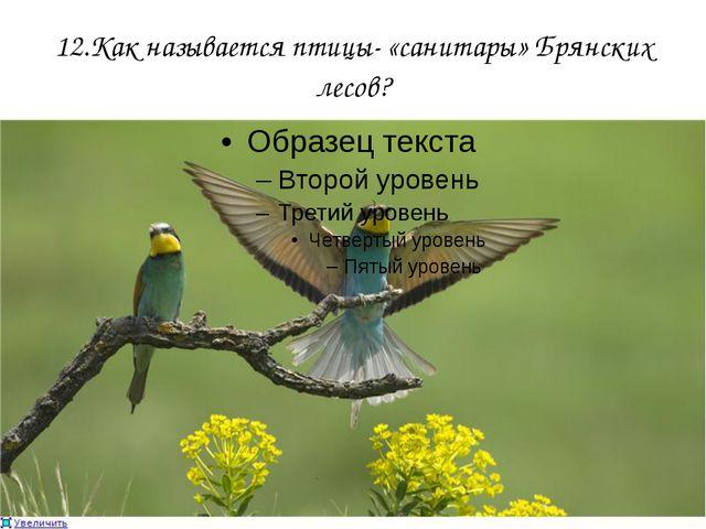 12.Как называется птицы- «санитары» Брянских лесов?