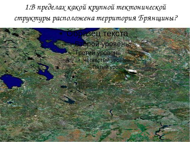 1.В пределах какой крупной тектонической структуры расположена территория Бря...