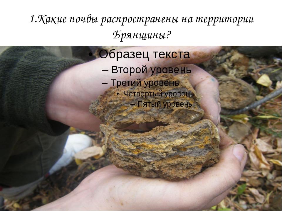 1.Какие почвы распространены на территории Брянщины?