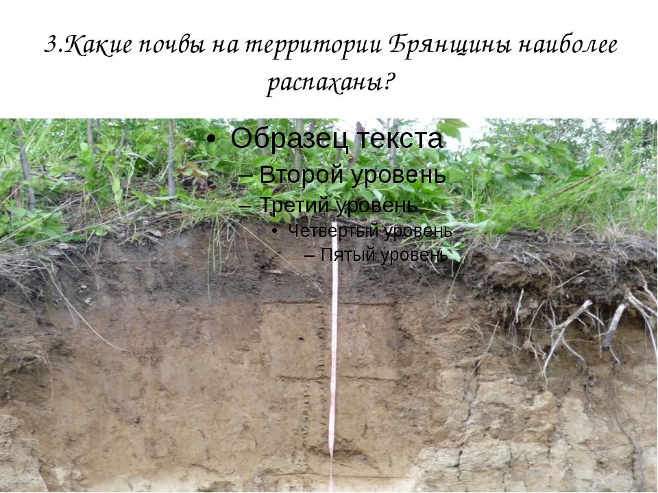 3.Какие почвы на территории Брянщины наиболее распаханы?