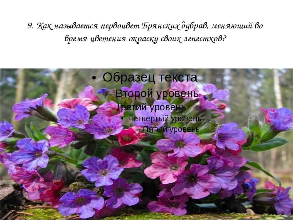 9. Как называется первоцвет Брянских дубрав, меняющий во время цветения окрас...