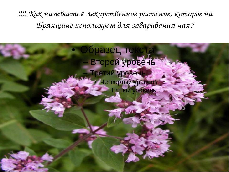 22.Как называется лекарственное растение, которое на Брянщине используют для...