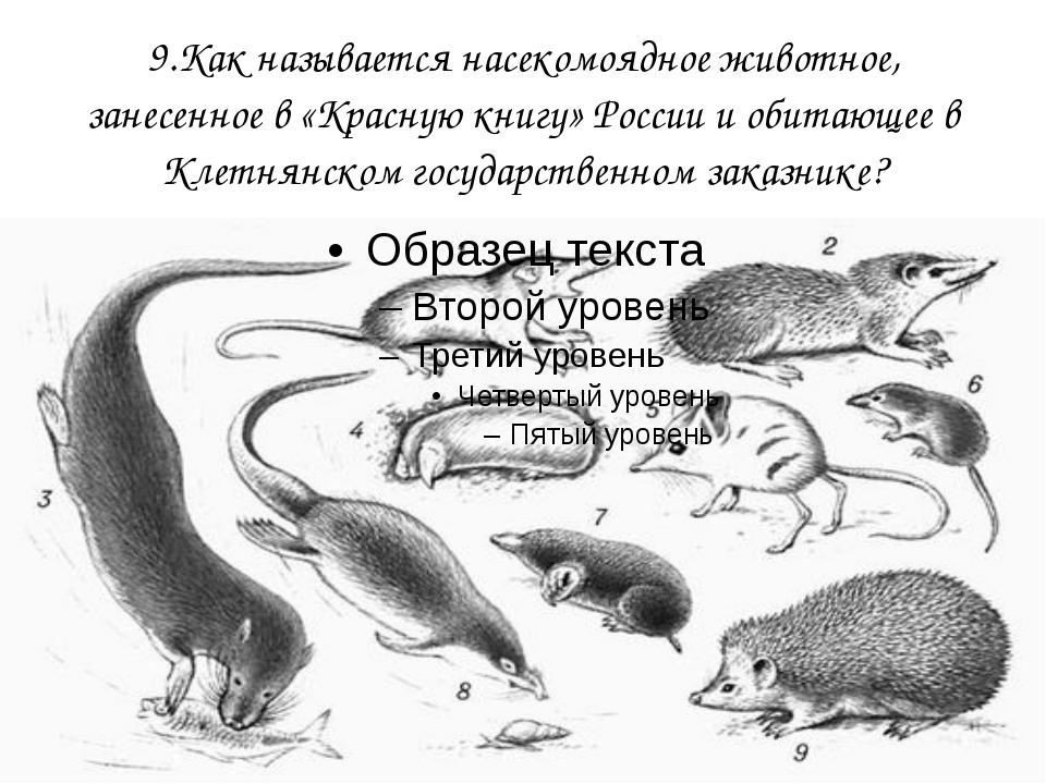 9.Как называется насекомоядное животное, занесенное в «Красную книгу» России...