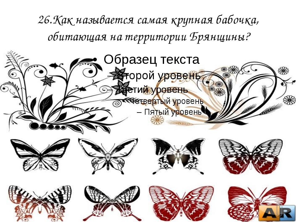 26.Как называется самая крупная бабочка, обитающая на территории Брянщины?