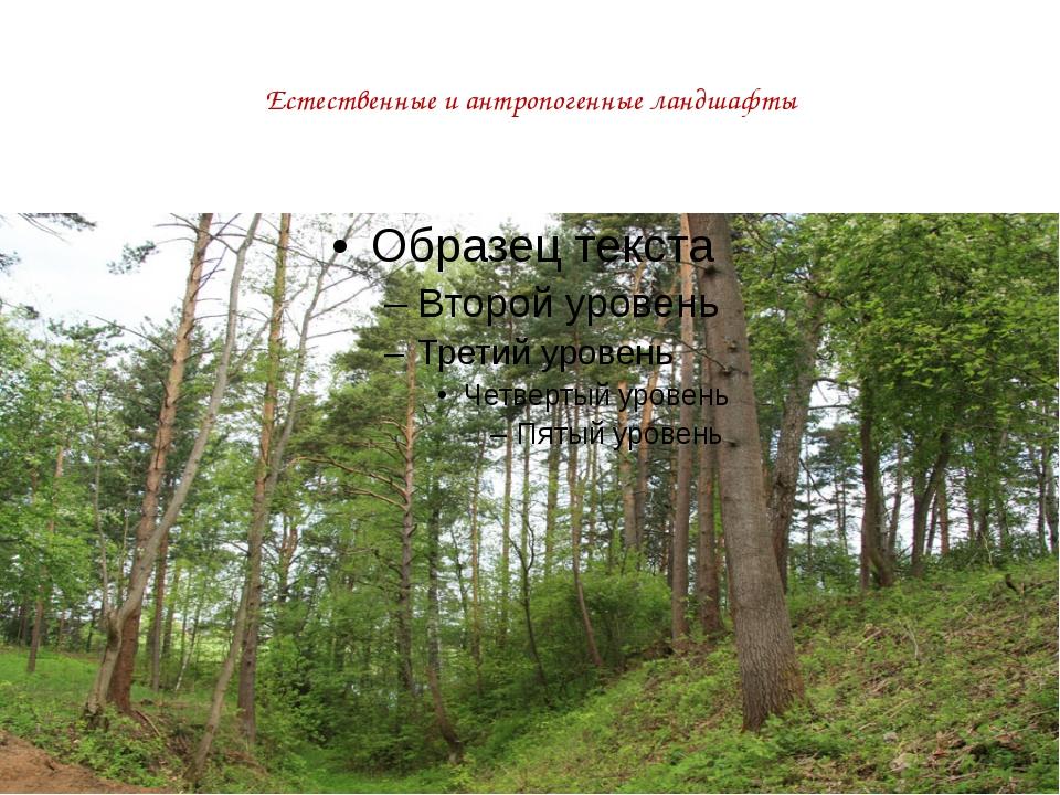 Естественные и антропогенные ландшафты