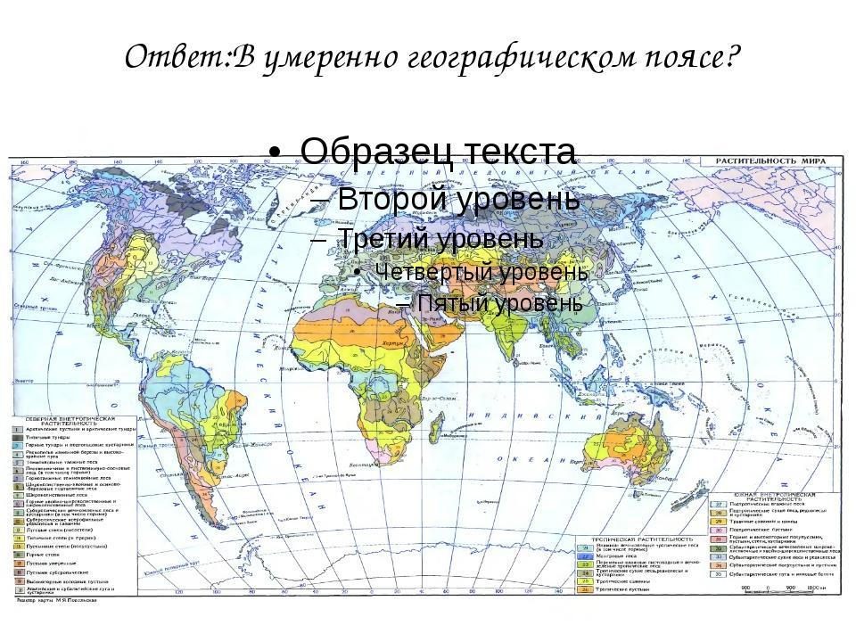 Ответ:В умеренно географическом поясе?