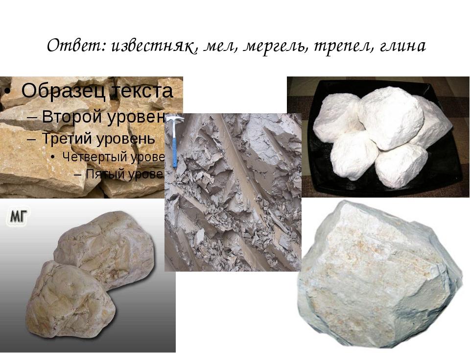 Ответ: известняк, мел, мергель, трепел, глина