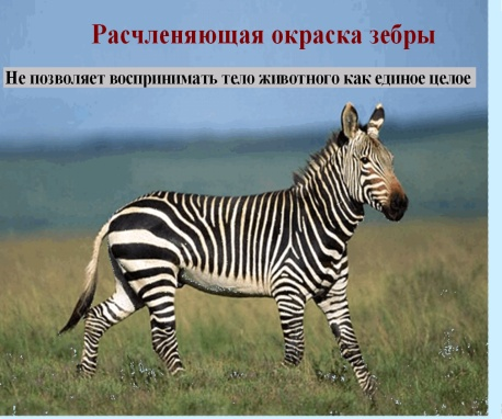 C:\Documents and Settings\test\Рабочий стол\2.bmp