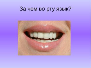 За чем во рту язык?