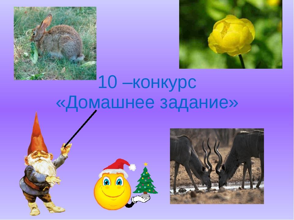 10 –конкурс «Домашнее задание»