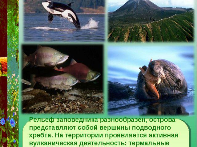 Рельеф заповедника разнообразен, острова представляют собой вершины подводног...