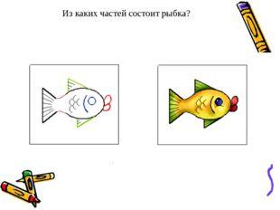 Из каких частей состоит рыбка?