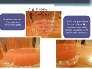 И 4 ДЕНЬ А на 4 день видно, что вода стала оранжевого цвета. То есть соверши